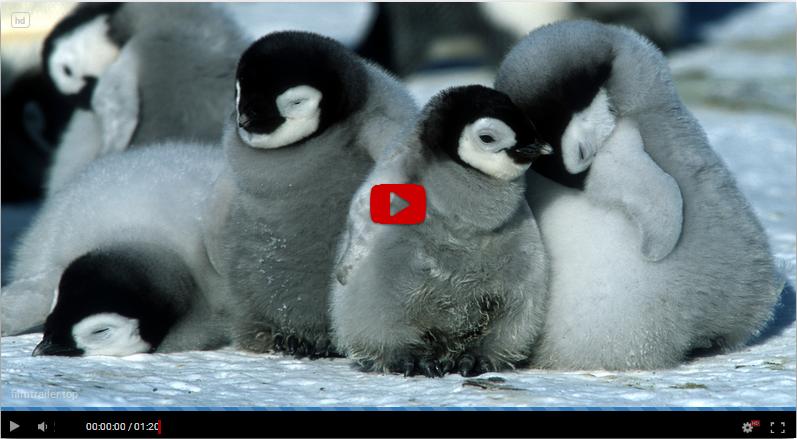 Pingvinresan 2 swefilmer